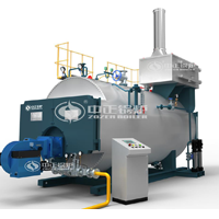 WNS series gas-fired hot water boiler